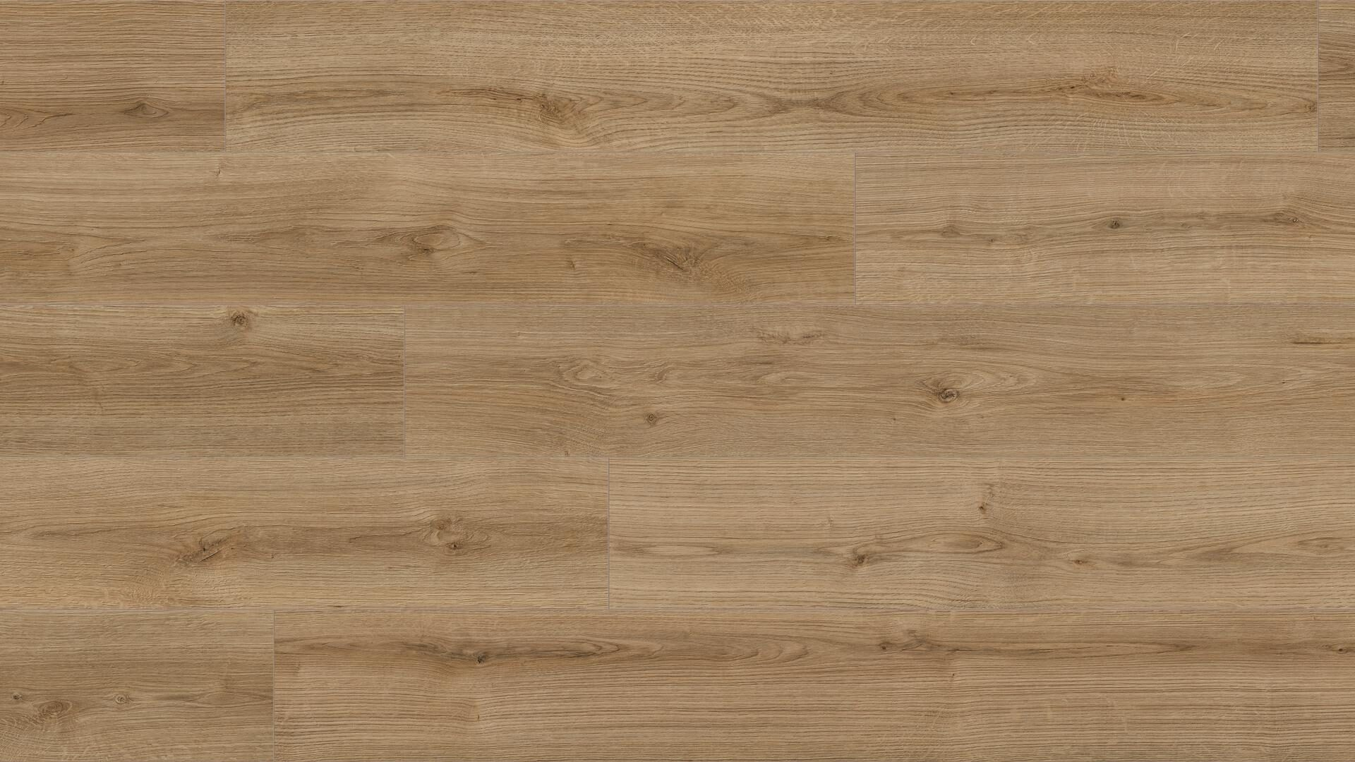 Ламинат Kaindl Natural Touch Oak Evoke Trend